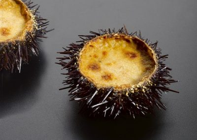 Stuffed Sea Urchin
