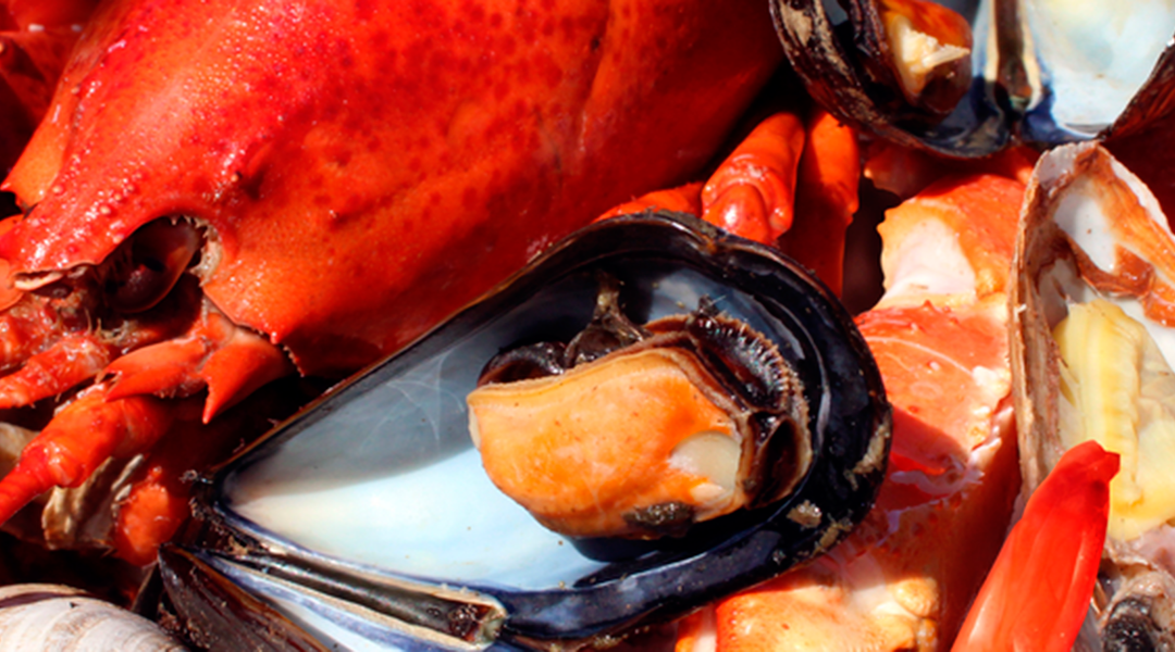Do you really know the seasonal seafood calendar?