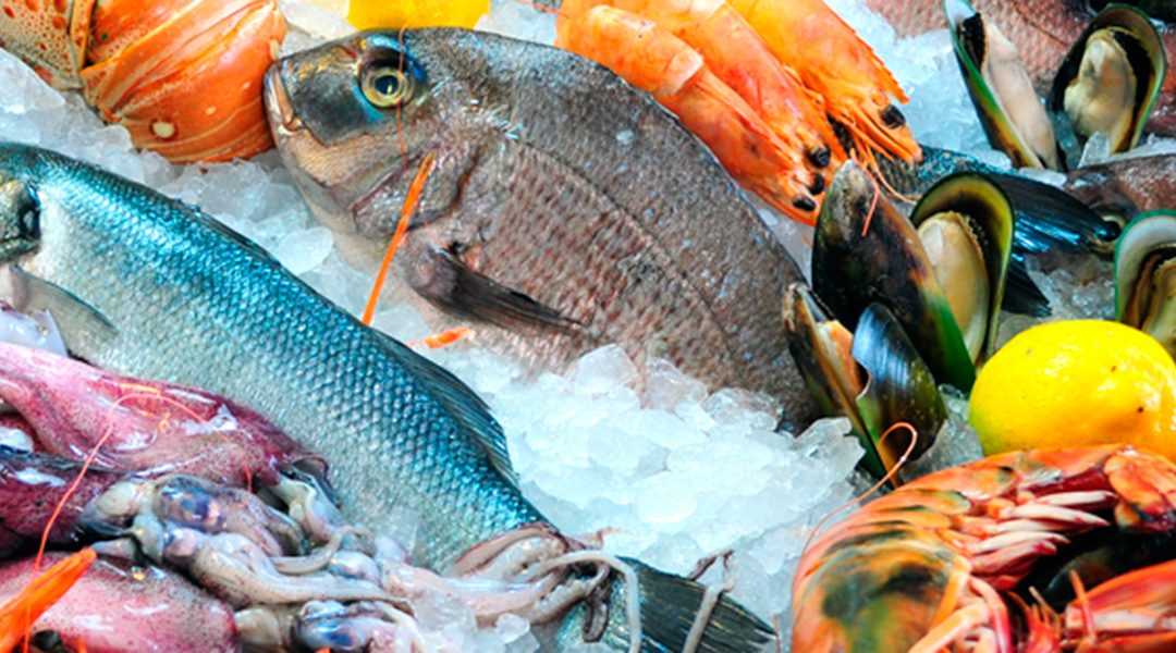 What are the health benefits of each kind of fish?